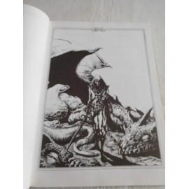 Libro para juego de Rol Stormbringer. Juego de rol en el mundo de Elric. 801. Año 1990.