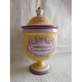 Antiguo frasco albarelo de farmacia en porcelana con tapadera de Camptotheca Acuminata. Firmado.