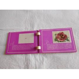 Álbum de cromos Las Flores. Colección Recreo.